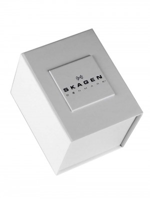 Дамски часовник Skagen Classic 355SSRS