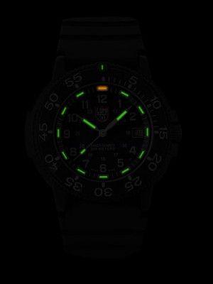 Мъжки часовник Luminox Original Navy Seal A.3001