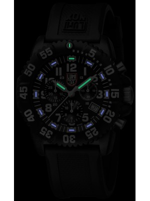 Мъжки часовник Luminox Navy Seal Colormark A.3081