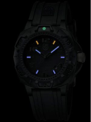 Мъжки часовник Luminox Sentry 0201.SL