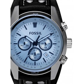 CH2564-Fossil